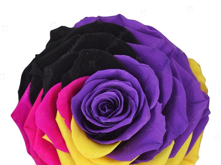 Tmx Pure Passion 6 51 932572 Fort Lauderdale, FL wedding florist