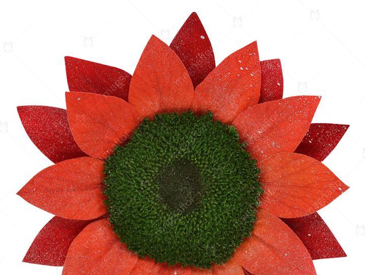 Tmx Red Glitter Sunflower 51 932572 Fort Lauderdale, FL wedding florist