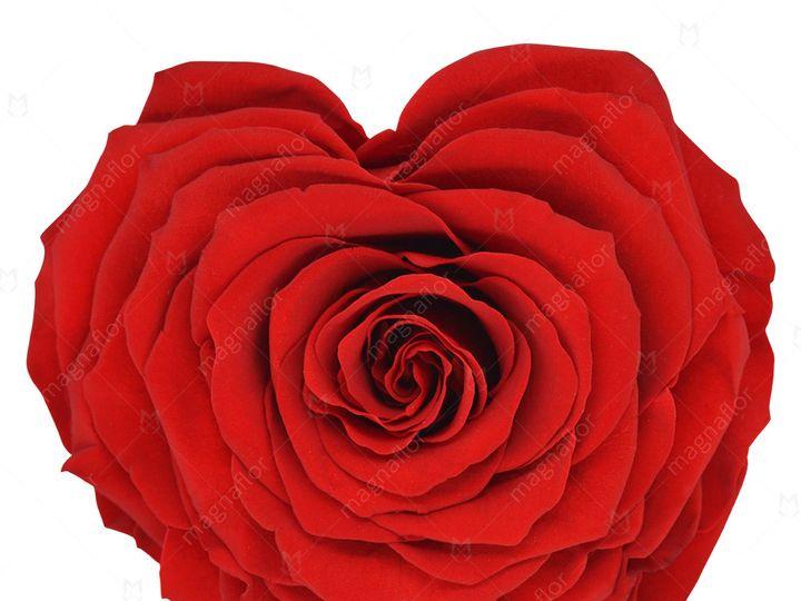Tmx Red Shape Of Love 51 932572 Fort Lauderdale, FL wedding florist