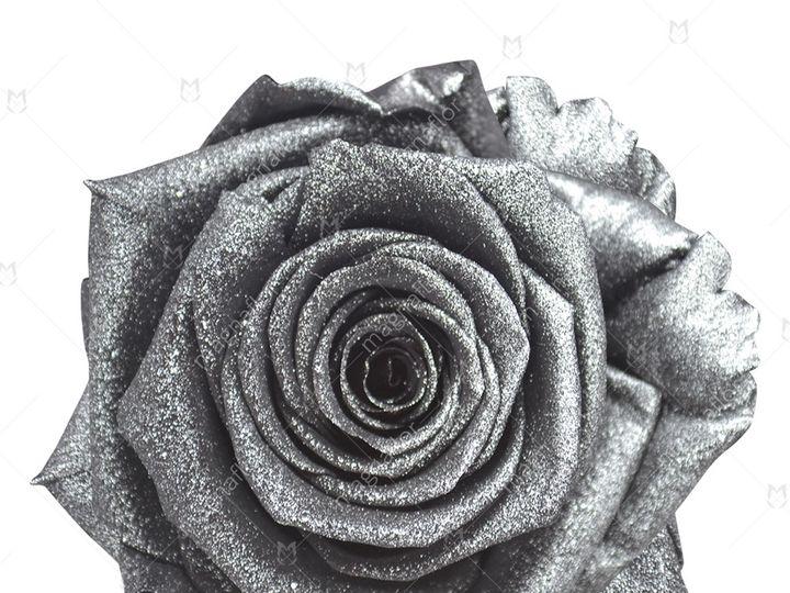 Tmx Silver Glitter Premium Class 51 932572 Fort Lauderdale, FL wedding florist