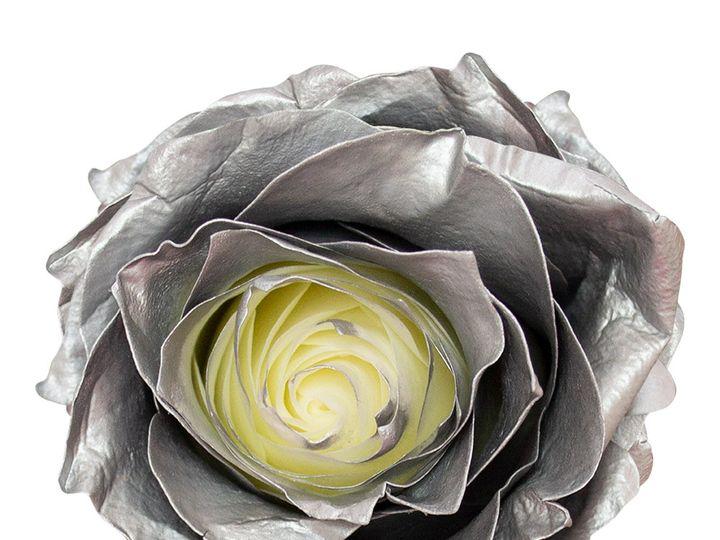 Tmx Silver Rose Original 1 51 932572 Fort Lauderdale, FL wedding florist