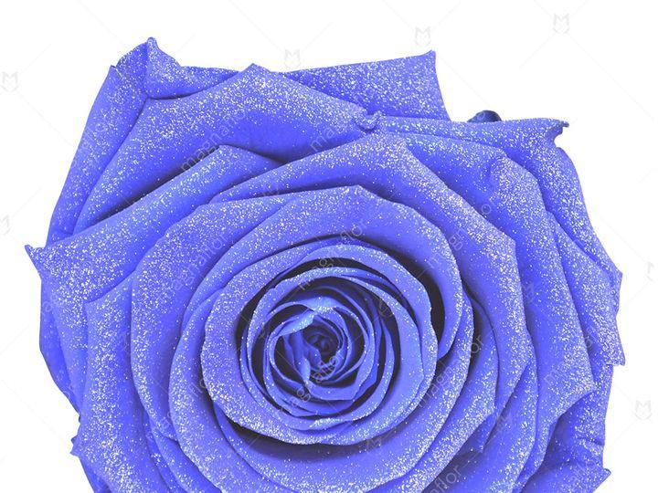 Tmx Sky Glitter Premium Class 51 932572 Fort Lauderdale, FL wedding florist