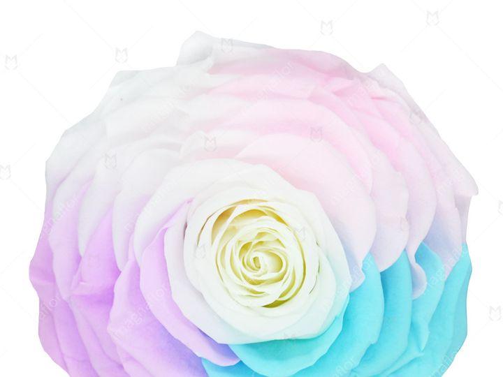 Tmx Sweet Sensation 5 51 932572 Fort Lauderdale, FL wedding florist