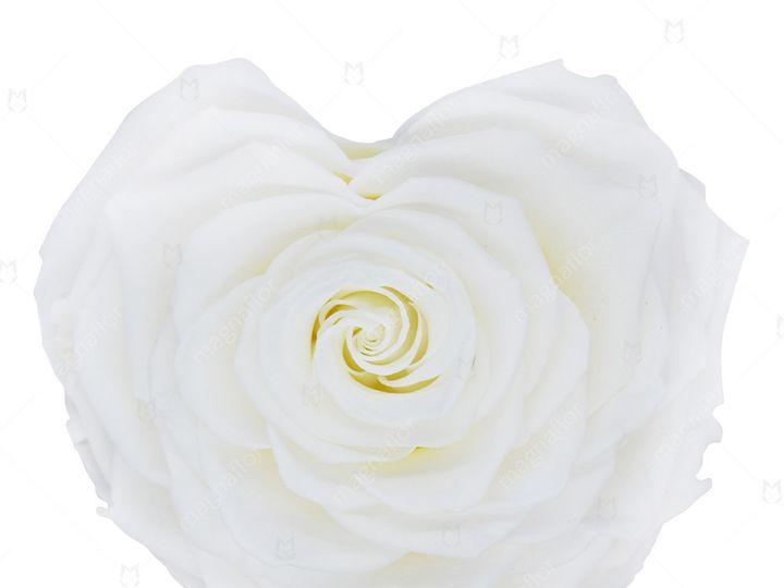 Tmx White Shape Of Love 51 932572 V1 Fort Lauderdale, FL wedding florist