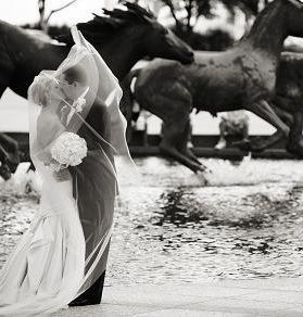 Tmx 1526066895 Bd45eaad35acdb83 Kiss By Mustangs B W Amy2 Irving, TX wedding venue