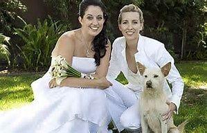 gay wed 2