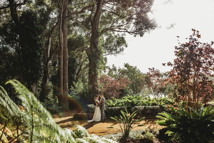 Fern's Garden