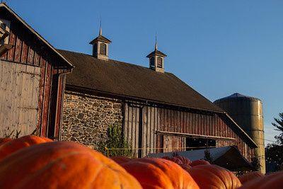Haskels Farm