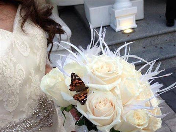 Tmx 1380763511369 10127275611292572797771650173301n Sound Beach, New York wedding officiant