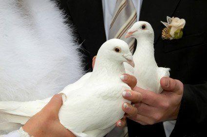 Tmx 1345224103515 Dove4 Twentynine Palms, CA wedding officiant