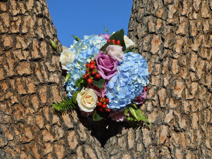 Tmx 1458892951664 Dsc0094 Twentynine Palms, CA wedding officiant