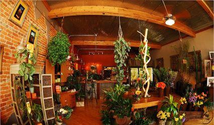 Brick Street Botanical
