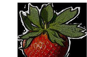Oskar Strawberry Event Motion Pictures
