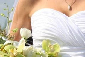 Champion Wedding Gown Specialist