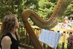 Elizabeth Borsodi, Harpist image