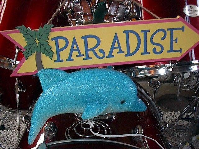 paradise dolphin