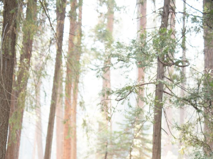 Tmx 1538098604 Ade3290fd05d7e6c 1538098601 36695ae6e00b1cc6 1538098585277 32 1P5A2964 Los Angeles, California wedding photography
