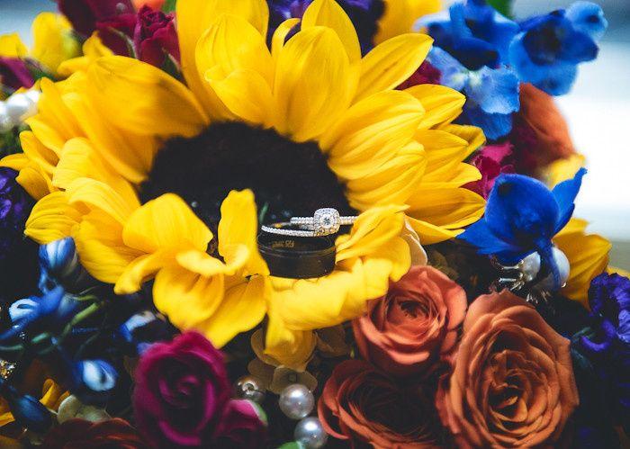 Tmx 1435874429797 Professional  Wedding  Photographer  Mooresville   Clover, SC wedding photography