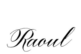 Raoul Martinez Calligraphy