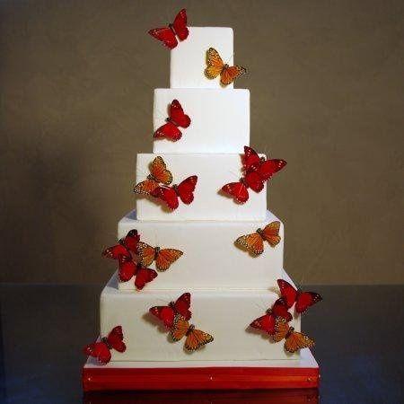 butterflysquare