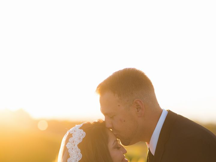Tmx 1471024757213 Eivansfacebookprofile 0031 Mokena, IL wedding photography