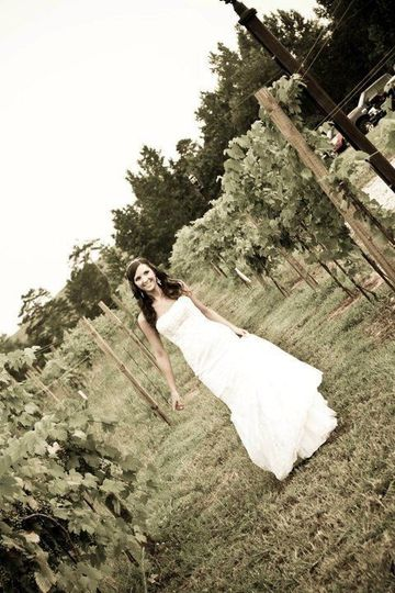 Bride at the winery
