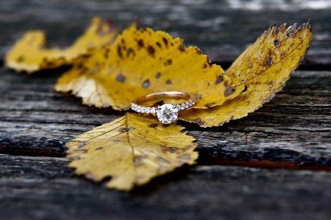 Tmx 1433433642699 1108284310153339111484728436942024n Troy, MI wedding jewelry