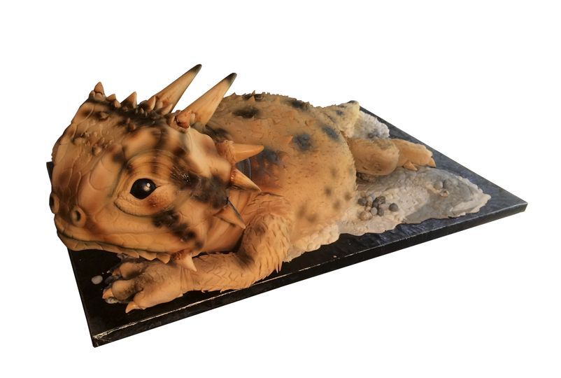 Sculpted horn frog/horned toad cake. perfect for groom's cakes, birthday and graduation.