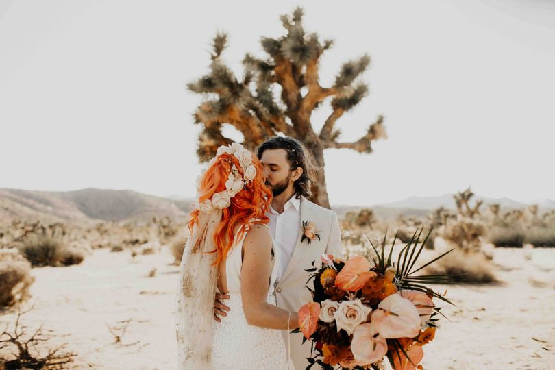 Marry Me Under a Joshua Tree