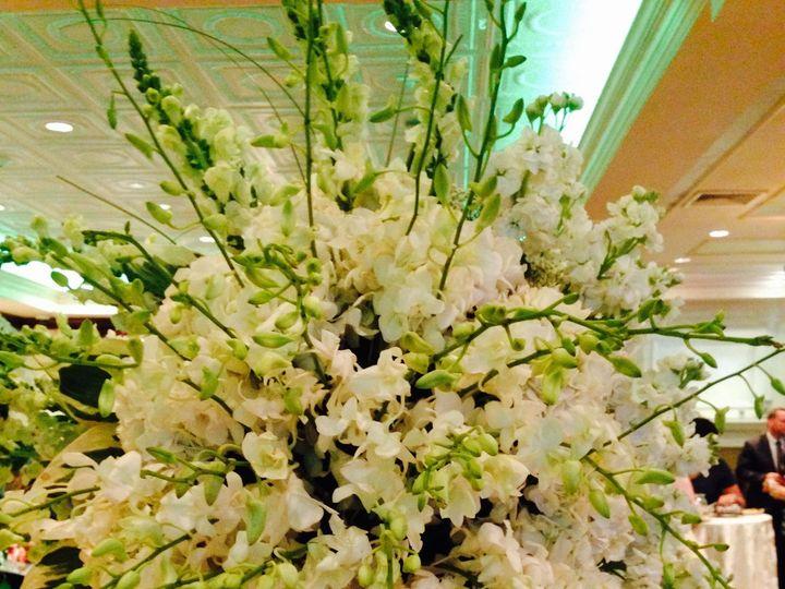 Tmx 1436201976548 Fullsizerender2 Woodbury, NY wedding florist