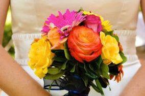 Flowers & Plants, Etc.