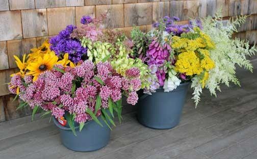 Bulk flowers for do-it-yourself arranging from Dan's Flower Farm, Sedgwick Maine