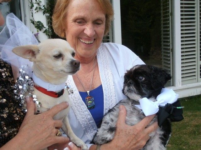 Tmx 1377285863253 P7250668 Guilford, Connecticut wedding officiant
