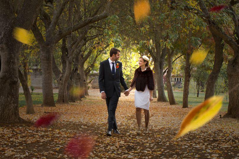 treewalk leaves le