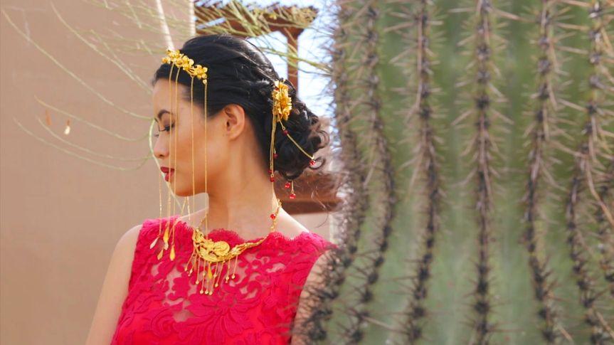 xiaoxiao cactus