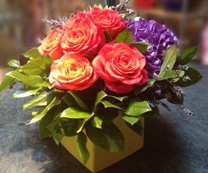 Tmx 1364593086103 2126484 Dallas, TX wedding florist
