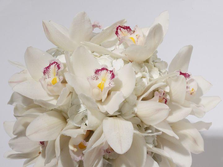 Tmx 1365044429111 Cymbidiumorchidboq08 Dallas, TX wedding florist