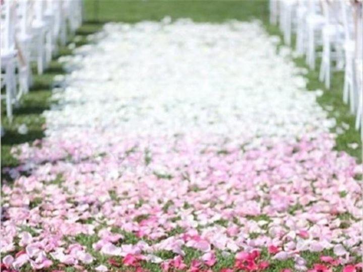 Tmx 500pcs Fake Rose Petals Flower Girl Toss Silk Petal Artificial Petals For Wedding Confetti Party Event 211ea813 F0b2 4773 97c4 409a3cf3414d Grande 51 1054092 Aurora, IL wedding eventproduction