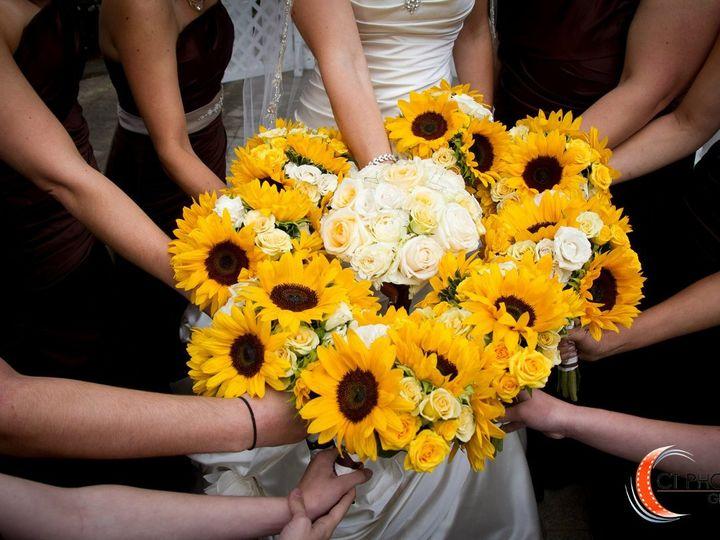 Tmx 1350317864148 1691704597200173837611217690108o Brookfield, New York wedding photography