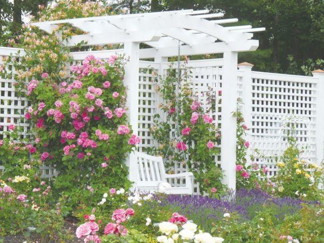 Tmx 1496773434484 Garden Wedding 9 Goffstown, NH wedding venue