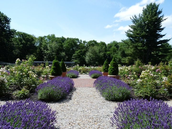 Tmx 1496773517847 Lavender Goffstown, NH wedding venue