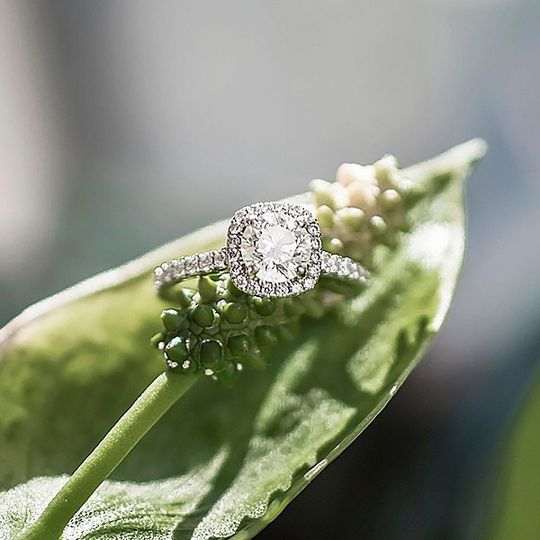 Halo Ring (17086W14)
