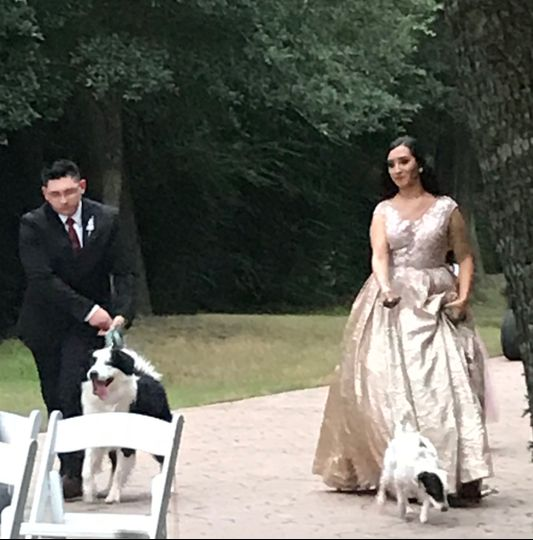 Man and woman's best friends