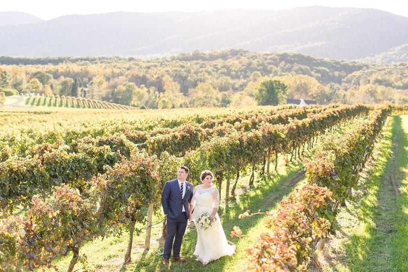 An Autumn Veritas Vineyard & Winery couple's  wedding shot