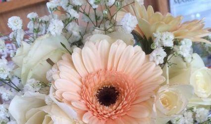 Chamberlain Acres Garden Center and Florist