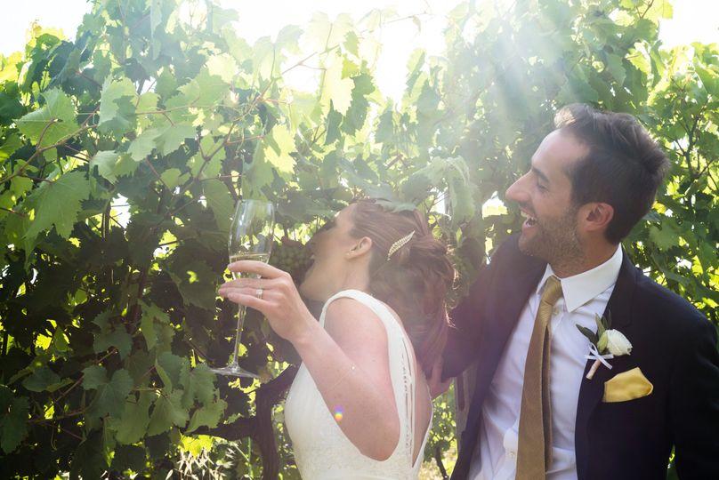 Wedding on the vineyard