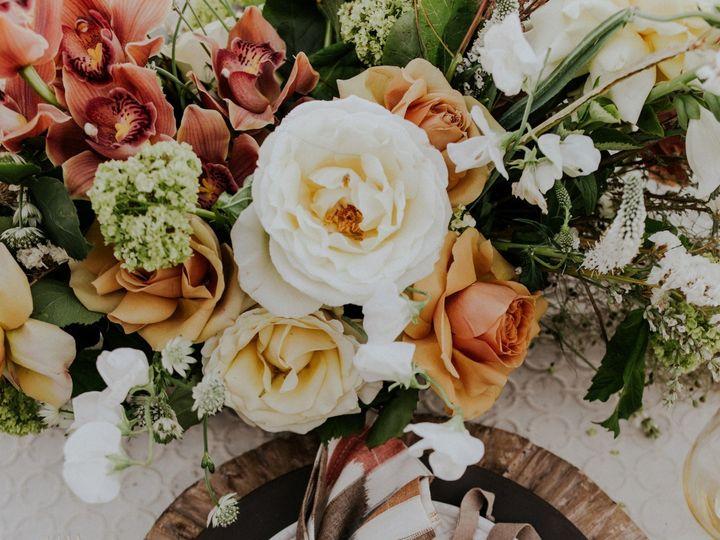 Tmx 1501545659142 Safariglampingstyledshootsneaks 2 Greensboro wedding invitation