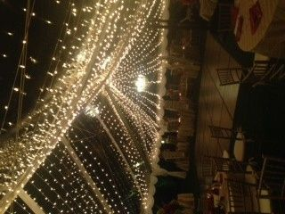 Tmx 1398458261389 Woodsby Kissimmee wedding rental