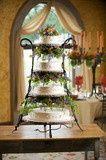 Tmx 1395089830014 2749282 North Andover wedding rental