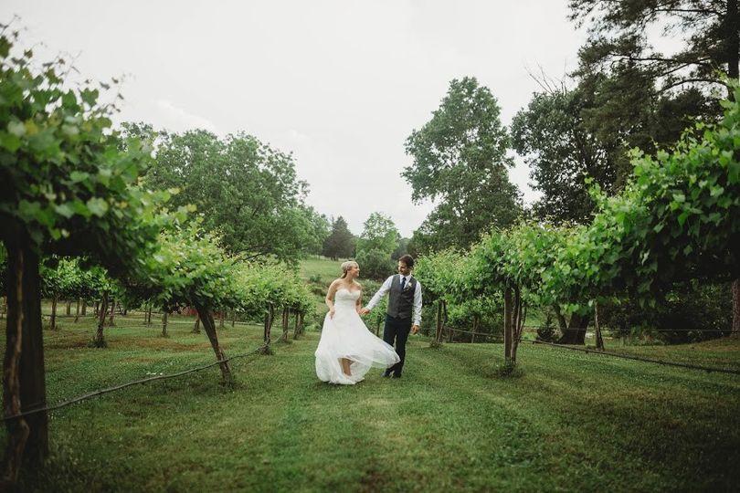 Walk in the Vineyard